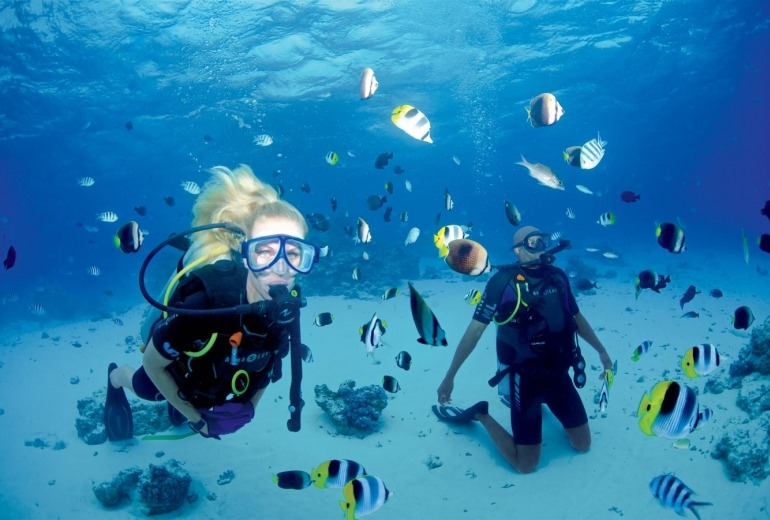 Scuba Diving a Thrilling Way to Explore the World Underwater
