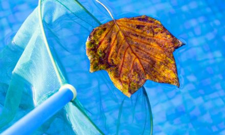 Close your pool properly this fall